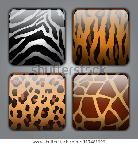 the set of the buttons of animal skins stock photo © perysty