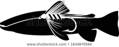 Silueta trucha blanco agua peces mar Foto stock © perysty