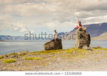 Clifs and Dynjandisvogur fjord - Iceland. Stock photo © tomasz_parys