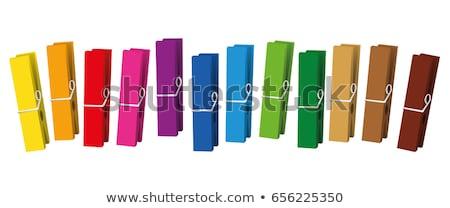 Clothes pegs  in a row Stock photo © Grazvydas