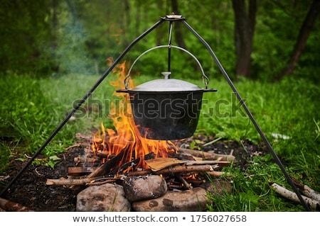 cauldron on fire stock photo © kotenko