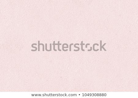 Fény rózsaszín levélpapír izolált fehér textúra Stock fotó © smuay