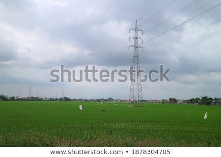 Trasformatore stazione cielo blu tensione torre Foto d'archivio © meinzahn