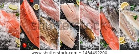 Ryb kolaż morza żywności osiem zdjęcia Zdjęcia stock © stevemc
