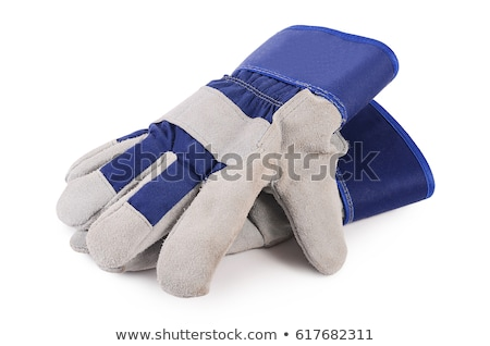Used gardening / work gloves stock photo © rohitseth