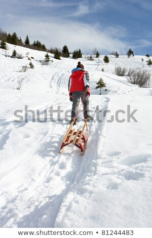 Pre-teen Boy Pulling A Sled In The Snow Stock photo © monkey_business