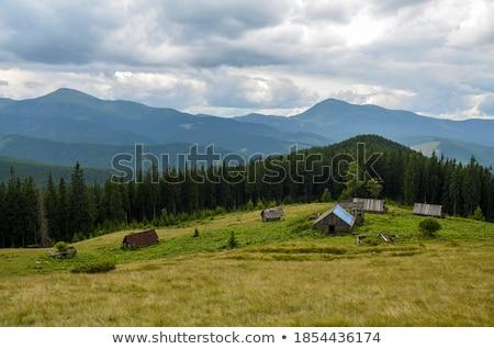 Eski ev vadi Yunanistan Bina orman Stok fotoğraf © Mps197