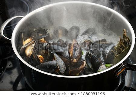 boiled mussel Stock photo © M-studio