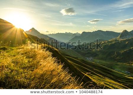 montanha · paisagem · montanhas · neve · árvores - foto stock © w20er