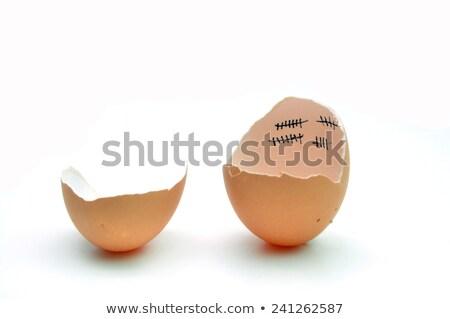 鶏 忍耐 めんどり 鳥 赤ちゃん 卵殻 ストックフォト © tony4urban