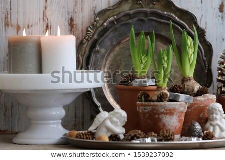 Karácsony tányér egyezség angyal szobrocska fehér Stock fotó © Rob_Stark