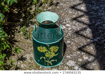 Traditional Metallic Vase on the Floor Stock photo © ankarb