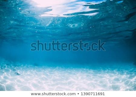 kék · víz · úszómedence · nap · tükröződések · fény - stock fotó © amok