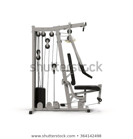 Multifunctional workout construction Stock photo © ozaiachin