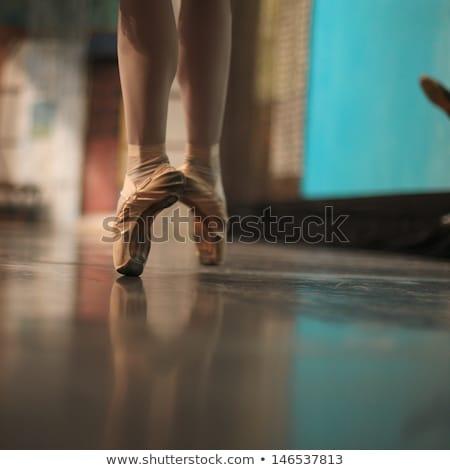 Kecses ballerina áll póz repülés lépcsősor Stock fotó © bezikus