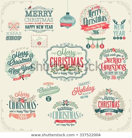 Sneeuwvlok ingesteld christmas nieuwjaar ontwerp kunst Stockfoto © LittleCuckoo