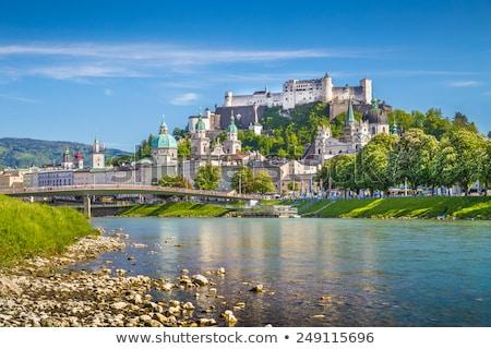 kasteel · panorama · water · brug · steen · geschiedenis - stockfoto © meinzahn