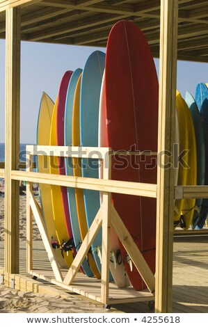 Surfboards rent and store on the beach Stock photo © Photooiasson
