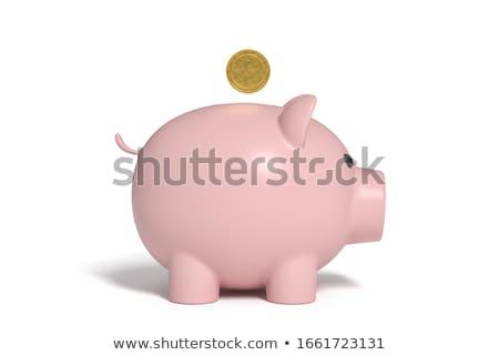 side view of piggy bank stock photo © cherezoff