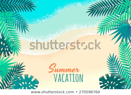 vector summer holiday flyer design with coconut and paradise isl stock photo © articular
