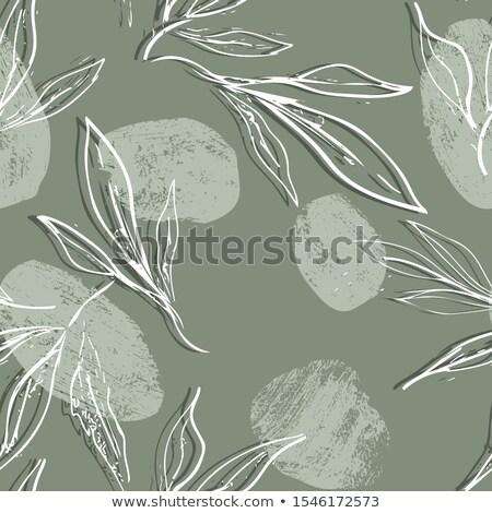 Blanche résumé floral modèle vintage Photo stock © cosveta