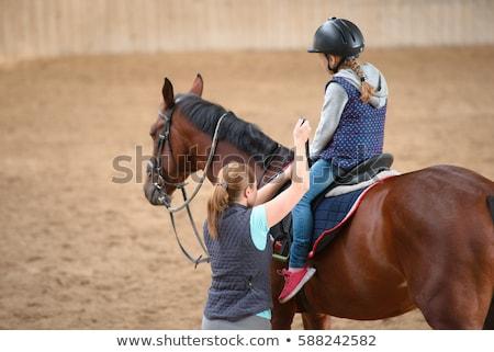 lovas · ló · istálló · nők · fiatal · áll - stock fotó © janssenkruseproducti
