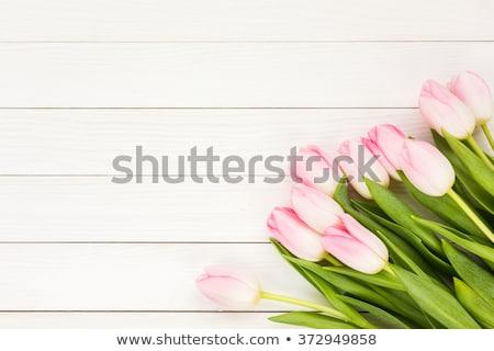 Blanco tulipanes luz flores madera Foto stock © -Baks-