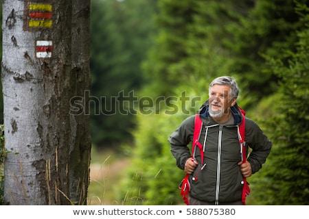 active senior hiking in high mountains stock photo © lightpoet