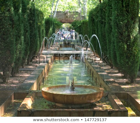 Fountain in the palace garden of Palma de Majorca, Spain Stock photo © Xantana