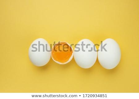 huevo · blanco · uno · naturaleza · aves · desayuno - foto stock © cynoclub