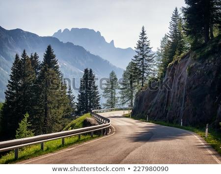 秋 · 風景 · 山 · 道路 · 午前 · 霧 - ストックフォト © kotenko