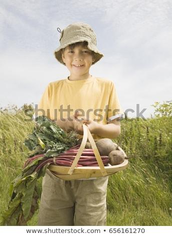 Jongen portret mand landbouw geluk vers Stockfoto © IS2