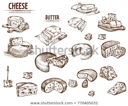 Digitale vector gedetailleerd lijn kunst boter Stockfoto © frimufilms