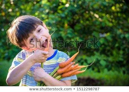 Férfi tart köteg répák kéz sárgarépa Stock fotó © IS2