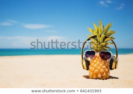 Viajar férias música fones de ouvido óculos de sol conchas Foto stock © karandaev