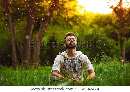man · mediteren · lotus · pose · jonge - stockfoto © jossdiim