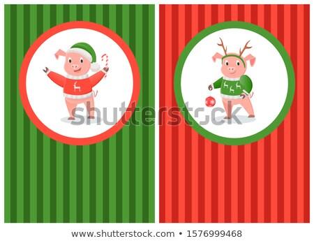 Happy New Year Postcard Pig in Red Hoodie Reindeer Stock photo © robuart