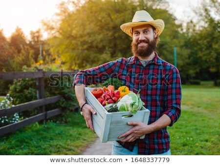 man farmer fence vegetable garden stock photo © lenm