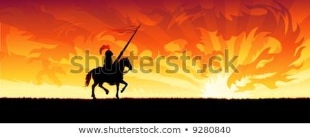 príncipe · equitación · dragón · ilustración · árbol · hombre - foto stock © bluering