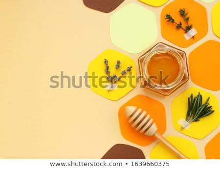 Miele colore collage eps 10 fiore Foto d'archivio © netkov1