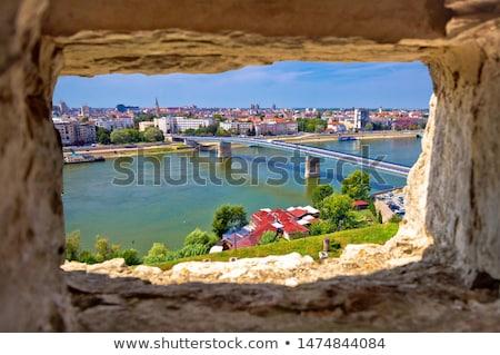 Miasta smutne dunaj rzeki widok z lotu ptaka kamień Zdjęcia stock © xbrchx