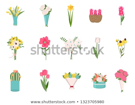 roses daisies bouquet and exotic plants vector stock photo © robuart