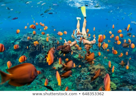 Stockfoto: Happy Woman In Snorkeling Mask Dive Underwater With Tropical Fishes In Coral Reef Sea Pool Travel L
