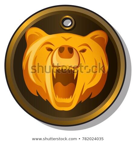 Fém gravírozott kép torkolat medve izolált Stock fotó © Lady-Luck