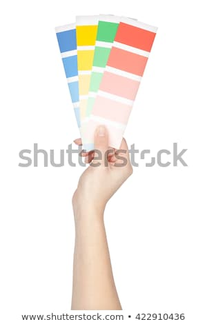 Decorator holding color charts Stock photo © photography33