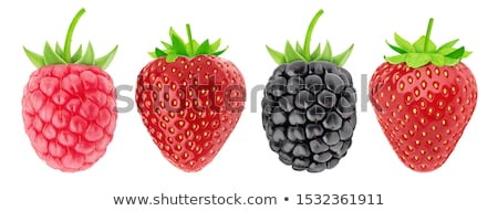 arrangement of strawberry and raspberries stock photo © zhekos