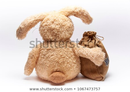 toy rabbit and christmas gifts on white stock photo © pzaxe
