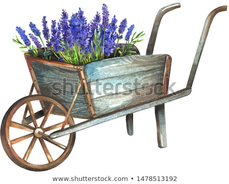 wooden wheelbarrow Stock photo © marimorena