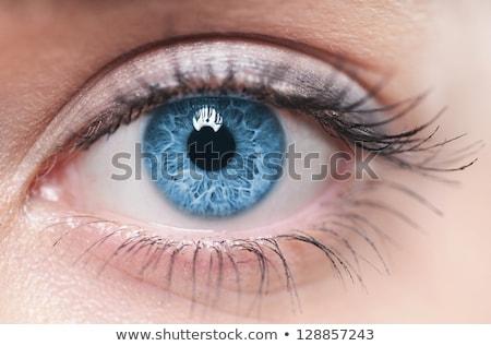 Stock fotó: Kék · szem · makró · lövés · gyönyörű · gyermek