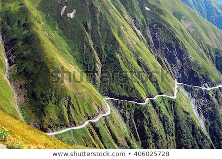 Danger road  Stock photo © CaptureLight